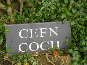 "We stayed in a cute little cottage called ""Cefn Coch."""