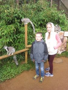 We visited Cotswold Wildlife Park with Aunt Carol - a superb day out!
