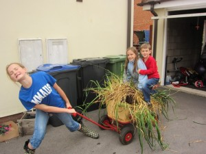 Simon dug out an unsightly bush from our back garden and Hannah hauled it away!