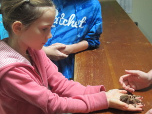 Mariah holding a tarantula . . . maybe jungle missions is in these girls' futures?