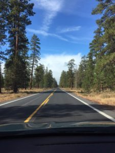 Even in October we got to enjoy some stunning weather as we drove down to Central OR